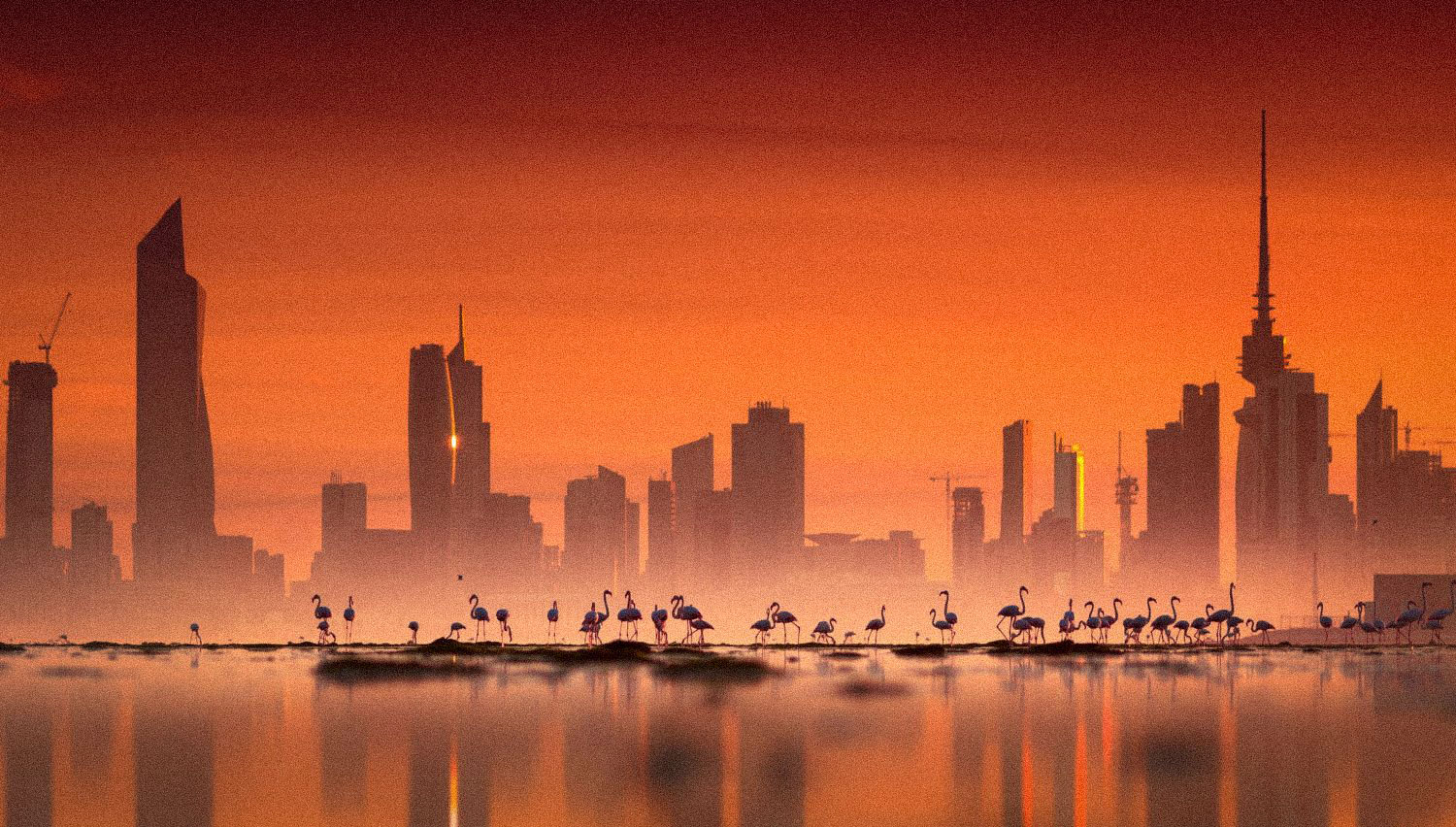Well-being matters in Kuwait